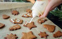 Топ-3 самых вкусных рецепта печенья с имбирем и корицей, секреты его приготовления