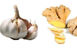 Эффективное похудение с имбирем и чесноком