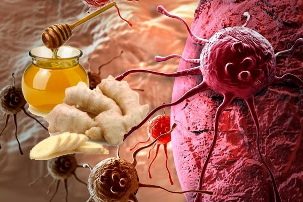 корень имбиря против рака
