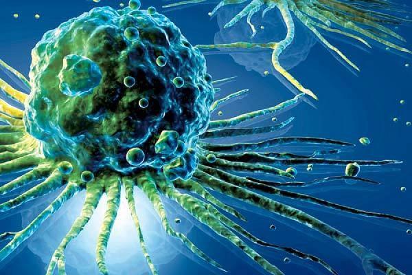 Имбирь при онкологии » Медицинский журнал